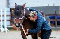 Pferdeosteopathie Seminar mit Ariane von Oertzen Becker
