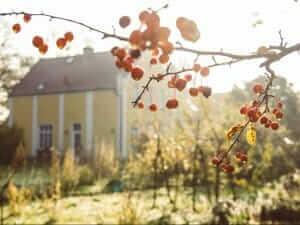 Garten - Gutshaus Ehmkendorf in Mecklenburg Vorpommern